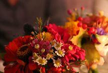 ** MARIAGES PAR NOCELY ** / Quelques images des mariages organisés par Nocely.  #mariage #nocely