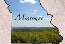 Missouri The Show Me State / I was born and raised in Missouri and I really love it here. I am so close to Ok., Ar. and Ks. that it takes such a short time to get to what ever I want to do. We love our rivers and creeks here. / by Teresa Scroggins White