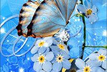 Kelebek vs tablolar