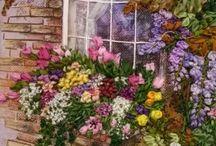 Flowers/ Gardens