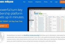 Wordpress / All Wordpress related topics