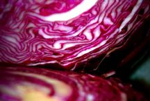 Cabbage Craze