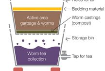 The Compost Connection