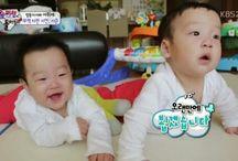 lee twin