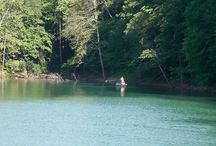 Fishing / View fishing photos from Norris Lake. See Bluegill, Redear Shellcracker, Crappie, Largemouth, Spotted Bass, Smallmouth Bass, Striped Bass and Walleye fish.