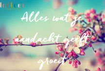InBloei Quotes / Mooie en inspirerende quotes :-)