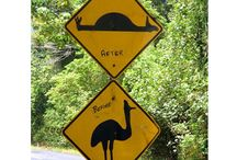 Signs . . .  / by Deb Fuss