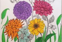 Adult colouring - colour combos
