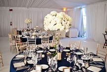 navy and champagne decor