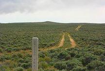 Oregon Trail / Traveling through history