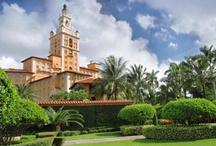 Florida: Sun, fun, and...humidity! / by Tiziana M.