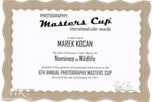 International color award / Master cup 2013