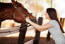 Fotos caballo