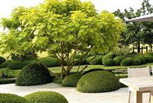House into Garden