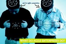 Bluewolf's Agile Enterprise