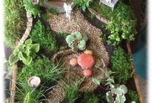 Fair y garden