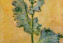 C.Monet