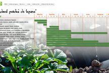 Tutoriale Grădinărit