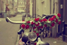 I love BICYCLES / Collection of images from the world and  the web