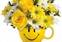 Get Well Flowers / Send get well wishes to your family or friend and cheer up their day with fresh cut flowers. http://www.campbellsflower.com/occasion/get-well-flowers-pueblo-co/