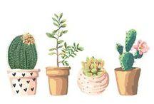 Botanical Pôster