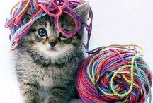 Crochê para animais