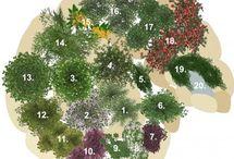 prirodna zahrada
