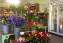 Flowers at Bunches! / Mainly showing fresh stock as it arrives at Bunches, giving you some ideas for decorating your home or office.
