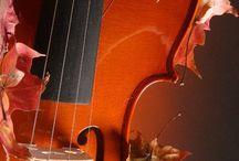 Violins / by Amy Redford