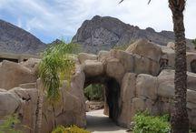 Arizona Resorts: Staycations