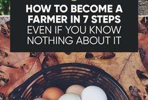Farming Smart, Small Farming Guide, Urban Farming / All about small farming in rural or urban settings. Stories about small farming and a How To Guide for organic farming - learning, planning, and implementing sustainable, smart farming practices...