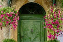 Gorgeous Greens / Lush Greens / by Susie Lopez