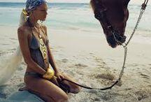 Horses & Models