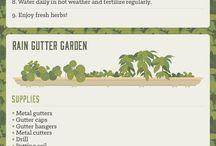 Grønnsaker og urter i hagen