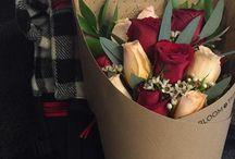 Envases para Flores