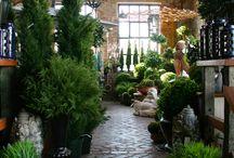 flower stores i like