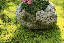 Sten som krukke