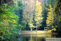 Buttes Chaumont / Park Buttes Chaumont to jeden z najbardziej urokliwych parków w Paryżu. Przkeonaj się sam!