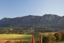 Constantia Valley Winelands / The Last Word Intimate Hotels welcome you to Constantia, a picturesque valley nestled beneath the Table Mountain National Park and commanding vistas of the Constantiaberg and Table Mountain ranges.
