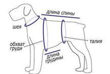 Dog одежда и др.