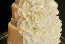 Cakes / by Amy Ventimiglia