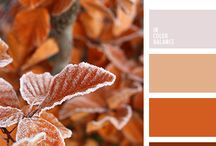 color palettes / by BrendaGay