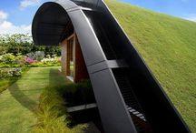 roof top gardens / by Vicki Marinovich