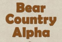 Bear Country - Story Series #8