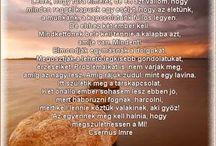 csernus