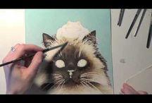 Стерхов - кошки