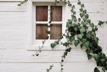 Pretty Windows