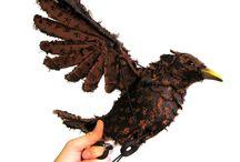 Robin puppet