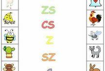 sz,z,c,s,zs,cs