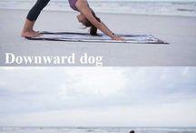 ejercicios elongación